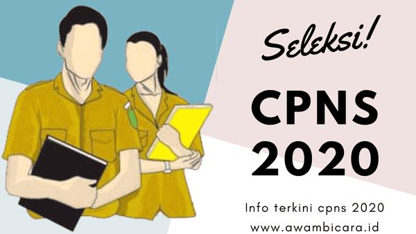 seleksi penerimaan dan pendaftaran cpns 2020