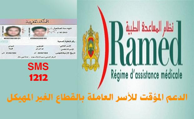 دعم الأسر العاملة في القطاع غير المهيكل بالمغرب