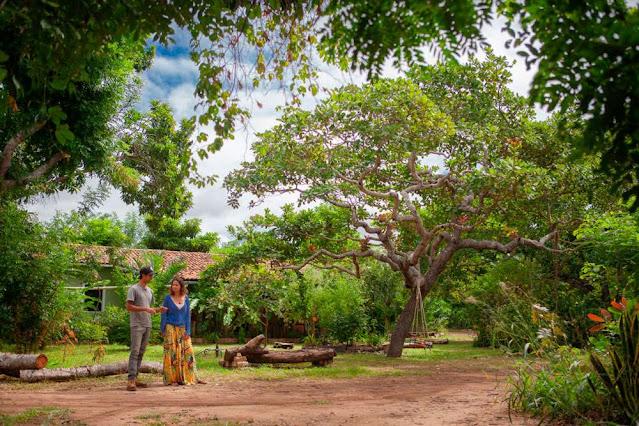 Fazenda Cajuzeira (Foto: Acony Santos)