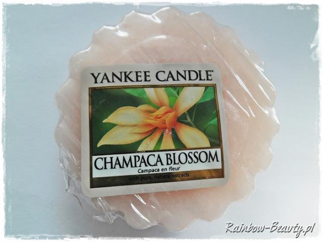 champaca-blossom-yankee-candle-opinie