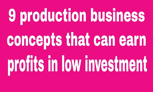 9 production business concepts that can earn profits in low investment
