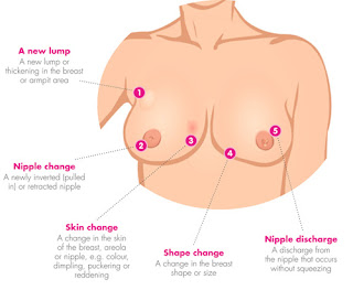 ಸ್ತನಗಳ ಬಗ್ಗೆ ನಿಮಗೆ ಗೊತ್ತಿರದ 15 ಶಾಕಿಂಗ ವಿಷಯಗಳು - Special Facts about Breasts in Kannada