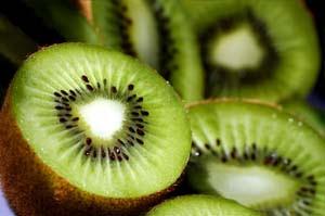 Grow Kiwifruit