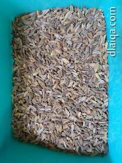 adas (fennel)