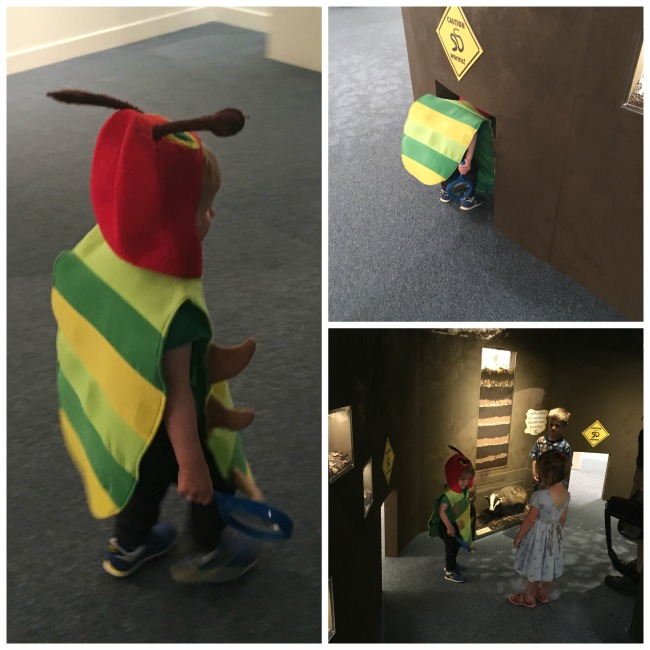 National-Museum-Cardiff-a-toddler-dressed-in-caterpillar-costume