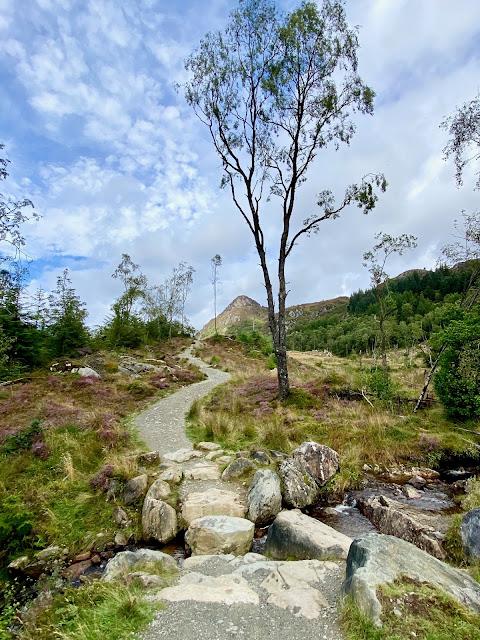Hiking trail up Ben A'an, Trossachs National Park, Scotland