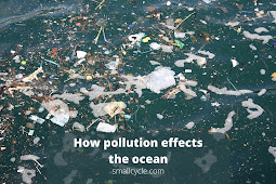 How Pollution Effects the Ocean