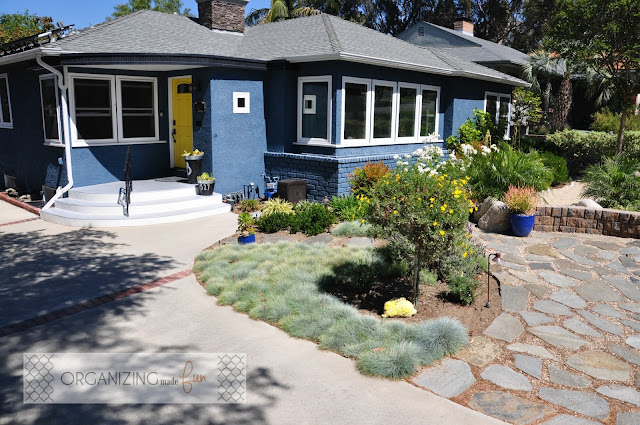 Drought Tolerant landscape grows quickly in a couple of years :: OrganizingMadeFun.com