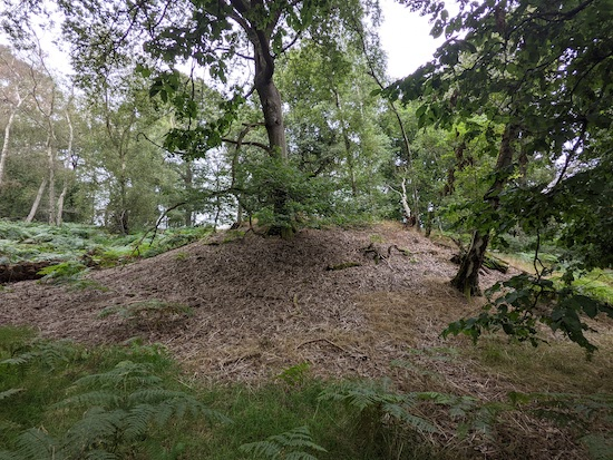 The Roman burial mound just north of the footpath through the woods