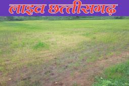 सुखते खेत टूटती उम्मीद। किसान अपनी फसल बचाने के लिए कर रहे प्रयास।sukha khet