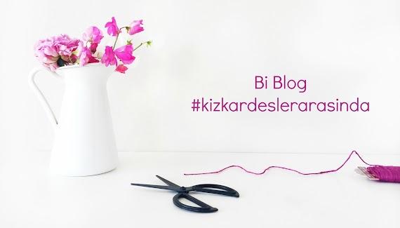 Blogging  | Bloğa Sosyal Medya Hesapları Nasıl Eklenir?