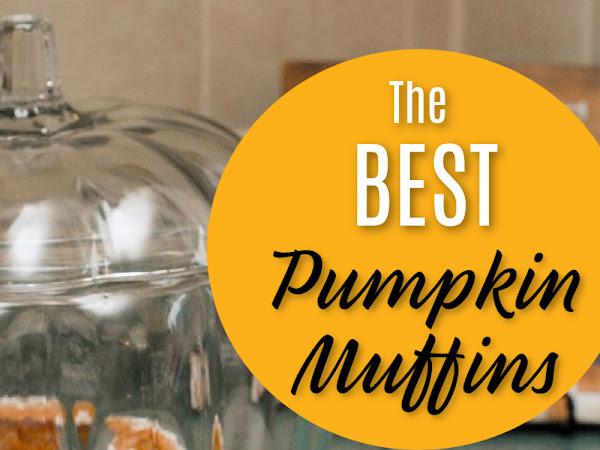 Yummiest Pumpkin Muffins Friday Feature