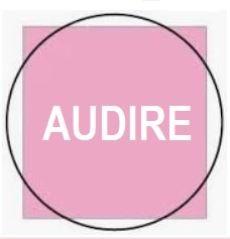 progetto Audire Irisform