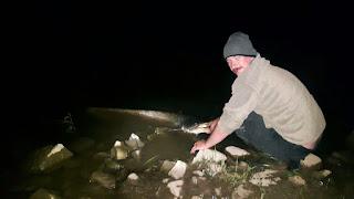 night fishing for catfish - wells