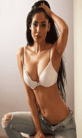 noida model escort service