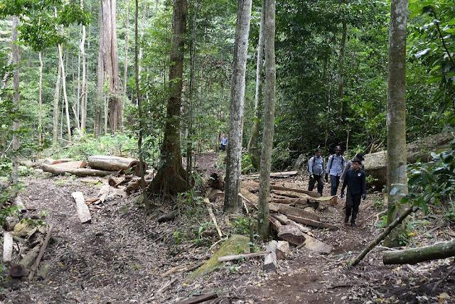 Cai Changpan Sembunyi di Hutan Tenjo, Polisi: Dia Sering Berburu di Sana