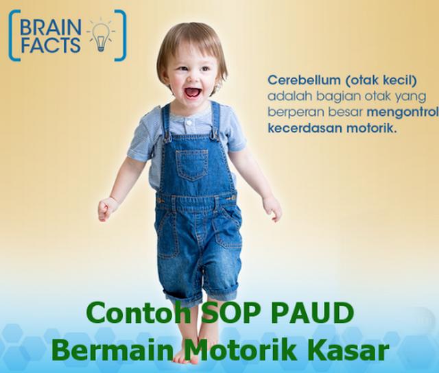 Contoh SOP PAUD Kurikulum 2013 Bermain Motorik Kasar