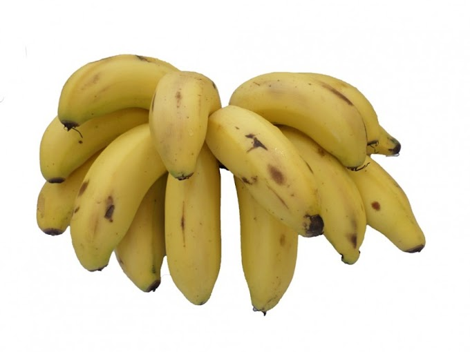 Benefícios da Banana Maçã para a saúde