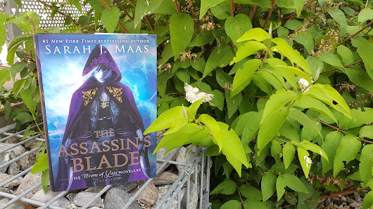Rezension | The Assassin's Blade by Sarah J. Maas