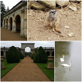 Season passes - Castle Ashby
