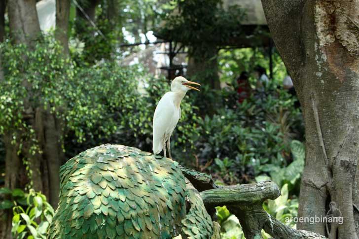 taman burung tmii jakarta