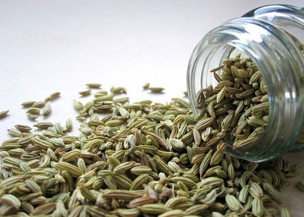Benefits Of Drinking Fennel Water: These 17 Amazing Benefits of Fennel
