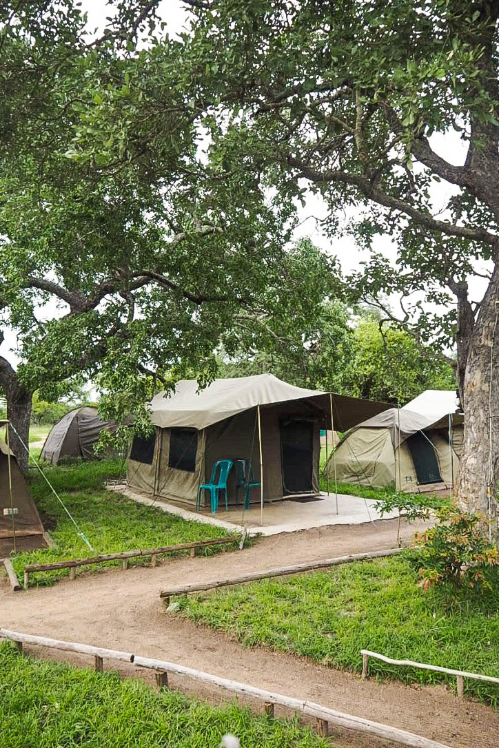 Camping on safari in South Africa