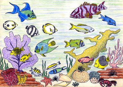 Colourful fish around coral reef.
