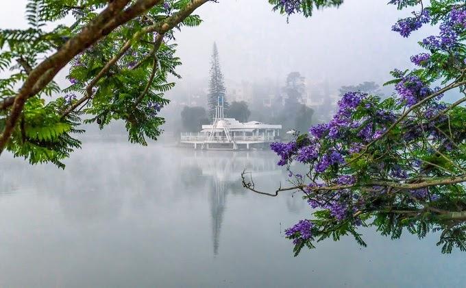 Sương sớm ở Hồ Xuân Hương