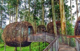 5 Tempat Wisata yang Wajib Anda Kunjungi di Bandung