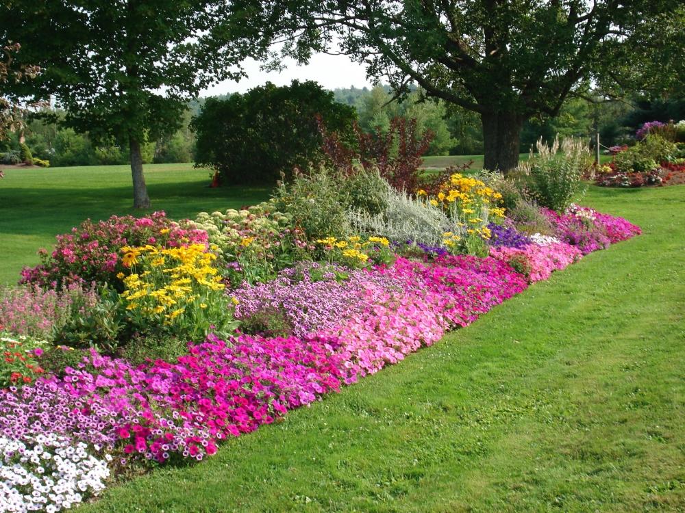 Arte Y Jardineria Arriates Ornamentales En El Jardin