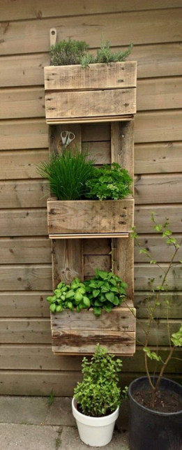AWESOME IDEAS TO DISPLAY YOUR VERTICAL PLANTS