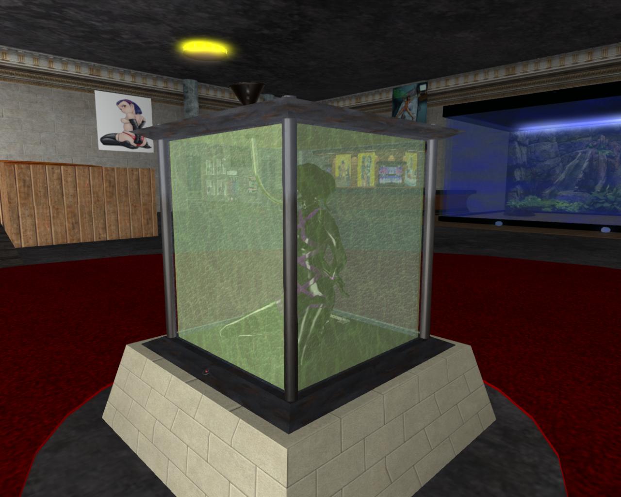 Virtual Bdsm Ames Bdsm Toys - Resin Box-9449