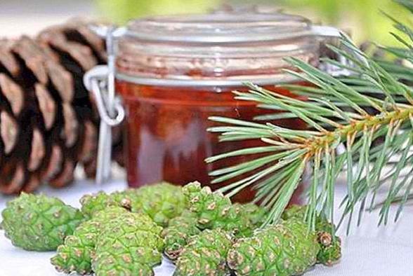 Πωλείται μέλι πεύκου στην Άρτα