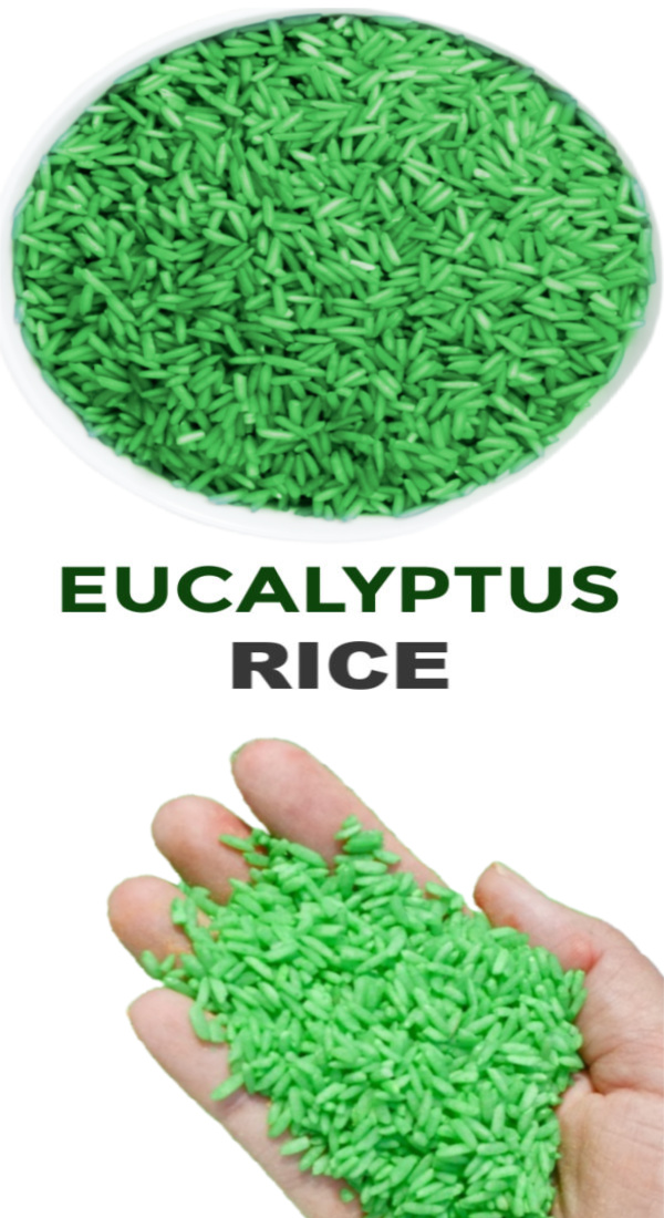 Sooth sick kids while they play with this easy to make eucalyptus rice. #eucalyptus #sickkidsremedies #sensoryactivitiestoddlers #howtodyerice #ricerecipes #growingajeweledrose #activitiesforkids