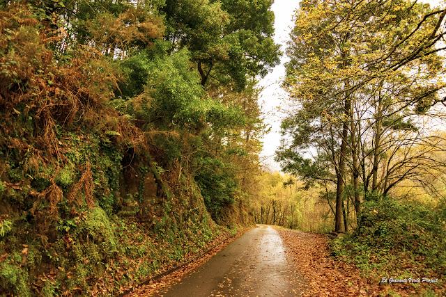 Carreteras de Taramundi - Asturias