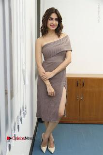 Actress Kriti Kharbanda Stills in Short Dress at Bruce Lee Movie Press Meet Stills  0041.jpg