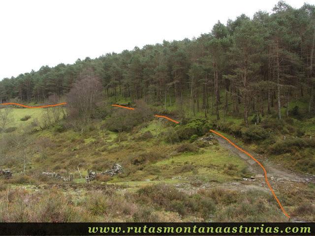Entrando en pista forestal