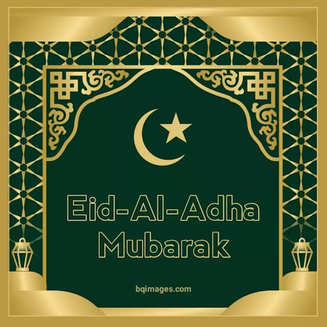 happy bakrid mubarak wishes
