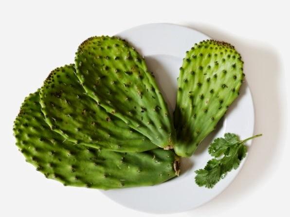 les 6 meilleures plantes pour maigrir efficacement   la ...