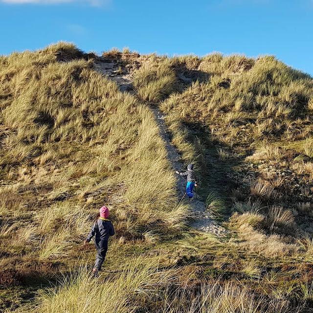 Urlaub auf Fanø mit Kindern: 12 Ausflugstipps für das wunderschöne Sønderho. Auf der größten Düne bei Sönderho, dem Mosedalsbjerg, den Sonnenuntergang zu genießen, ist ein besonderes Erlebnis und einen eigenen Ausflug wert!