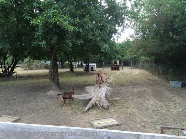 Foto de la Granja en Camping La Chenaie | caravaneras.com