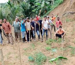 Inovasi Desa Melahirkan Produk Teh Sehat Berbahan Daun Kelor