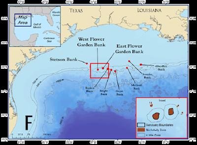 Galveston offshore fishing charters