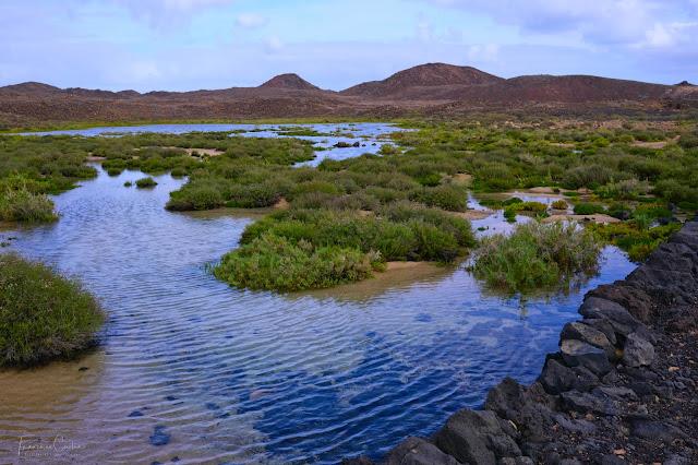 Islote de Lobos. Fotografia Abuelohara