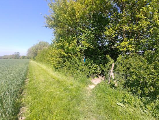 Ashwell footpath 20 - point 5