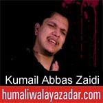 https://humaliwalaazadar.blogspot.com/2019/08/kumail-abbas-zaidi-nohay-2020.html