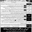 Pak Air Force Jobs 20 jan/Aaj newspaper