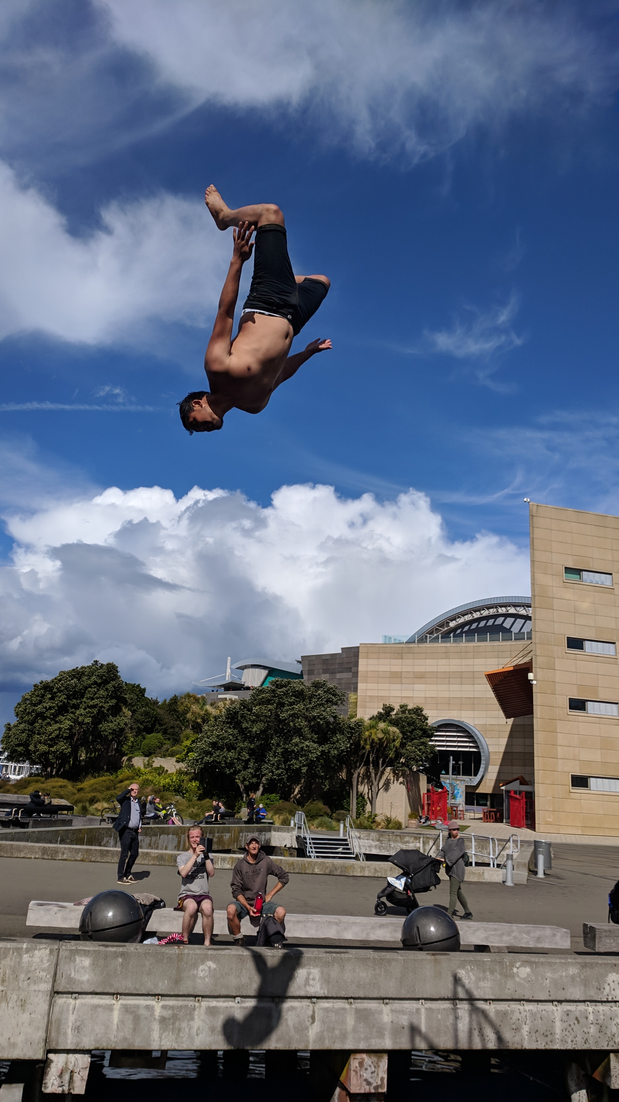 Diving into the Wellington Harbour with Te Papa museum in the background
