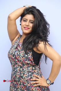 Actress Manisha Tagore Pictures at Hyderabad Love Story Platinum Disc Function  0050.JPG